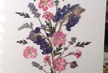 cartões com flores desidratadas