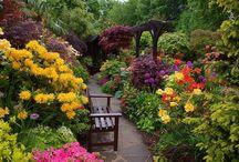 Gardens full of colours