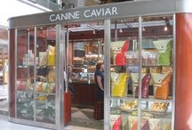 Canine Caviar Friends  / by Official Canine Caviar Pet Food
