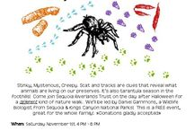 Scat, tracks and tarantula walk / A hike at Dry Creek Preserve with a spooky theme