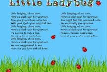 Classroom Ladybug Theme / by Sue Schueller