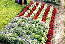 Patriotic Landscaping
