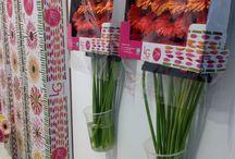 Floral tradefair Aalsmeer / Aalsmeer