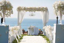 Wedding Ideas / by Megan Hale