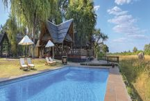 Safari Vacation Packages