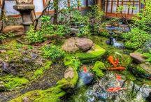 Garden - inspiring