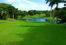 Caribbean Golf - Golf Courses / Caribbean Golf - Golf Courses - Caribbean / by Caribbean Sunshine