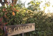 \\ Garden //