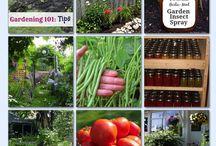 Nurturing green gardens
