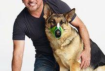 Comportamiento de perro