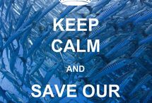 Save our Ocean