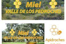 apicultura en España