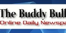Ryze Friends - Websites and Blogs