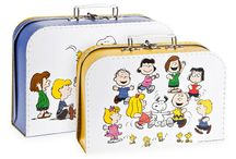 Lunchboxes & Briefcases
