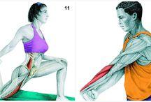 exercicio de coluna