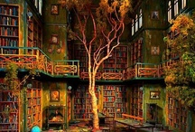 The amazing world of library