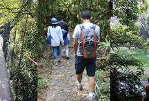 Berpetualang di Canopy Trail