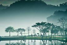 Taiwan / by Alison Windler