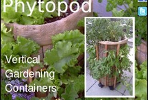 Apartment Gardens / Apartment garden gardening small space  / by Dani Baker