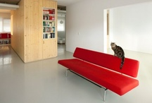 Living Room Design / by Holo Cactus