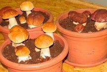 Выращивание белых грибов дома на подоконнике