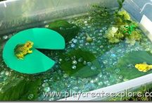 Pond Life Ideas