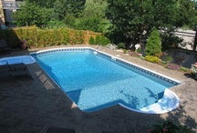Future Pool Ideas / by Betsy Gurd-Stoneburner