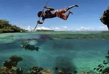 Spearfishing / Spearfishing pics and posts