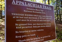 Hiking Trails / Enjoying the beautiful outdoors in the Poconos on scenic hiking trails.