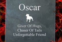 Pet Memorial Plaques / http://www.houseandgardenplaques.co.uk/pet-memorials