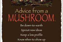 Nature Spirit Guide