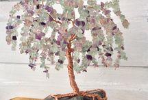 Kivi puu