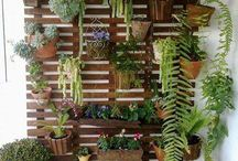Green Thumb / Gardens and green spaces / by Rebecca Wright