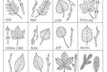 Natur - blade