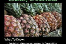 All about GMO's, EBOLA, VACCINES & OTHER POISONS / by Doms Sis