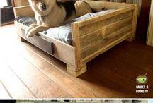 cuchas para perros
