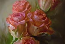 розы / цветы