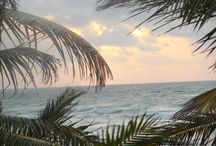 Beach impressions  / Tulum has been rated by Tripadvisor as one of the top ten beaches worldwide. See our pictures and make up your ow mind.