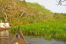 Safari Experiences in KwaZulu Natal