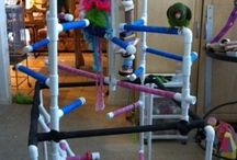 PVC Parrot Stands and Gyms