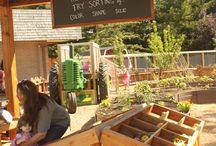 Kiosque de la ferme fruit et légume