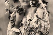 ünlüler ve kedileri / fotoğraf