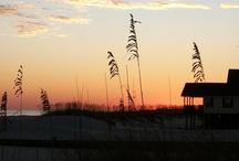 Beaches, Boats and Coastal Life / Life or Something Like It!