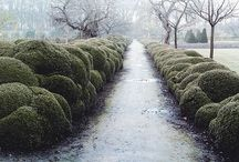 exteriors / parks, gardens and manipulated spaces / by elmey