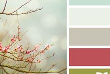 Colour Swatches / by Ruth Stenson