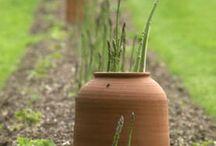 Gardening / by Kelly Aikens