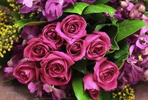 Emerald & Fuchsia hues  / Dramatic and yet playful a strong combination that will insure great photos
