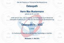 Urkunde kaufen Assistenzarzt (m/w) für Orthopädie und Unfallchirurgie
