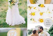 theme color wedding