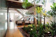 small indoor garden